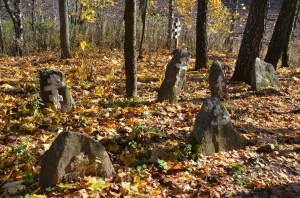 2. Grave stones of Old Believers on Lukino villag cemetery